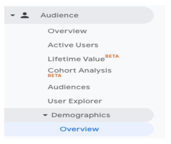 How to look up demographic analytics