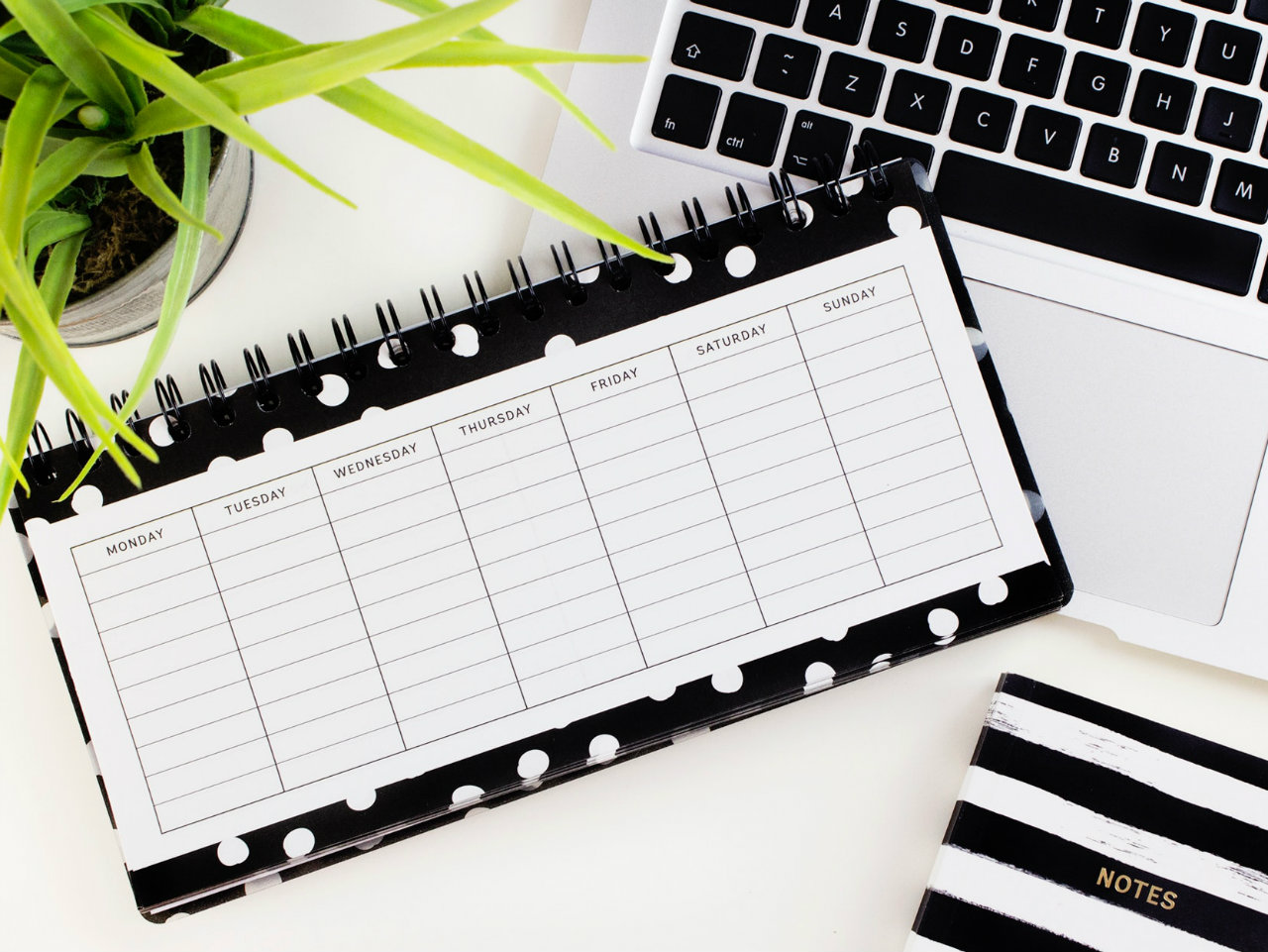 Time to start thinking about your social calendar
