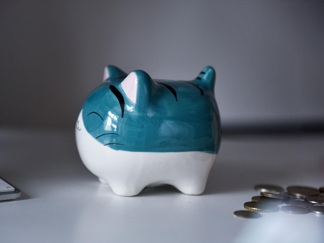 A Cute Cat Piggy Bank from Anna Tis on Pexels